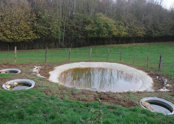 Poel, stapelmuur en voortplantingswateren voor de geelbuikvuurpad
