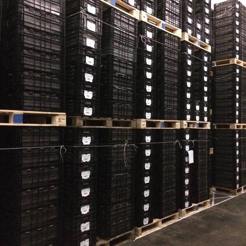 Cooling storage at VWS