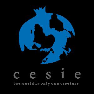CESIE, Italy