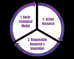 RAISD methodology