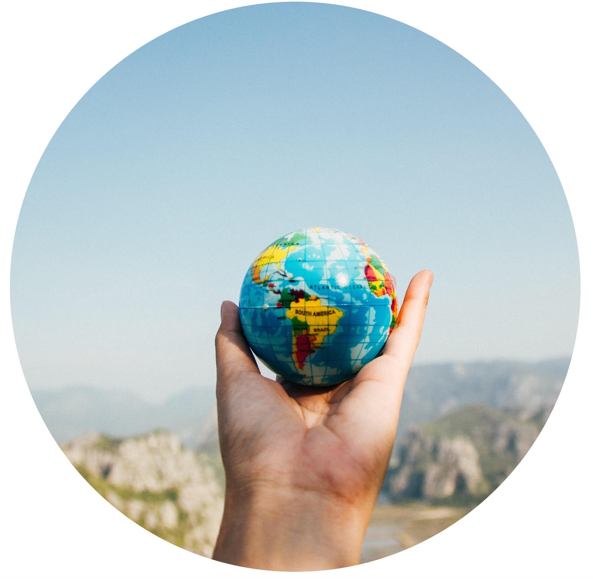 Erasmus per Giovani Imprenditore e diventato global