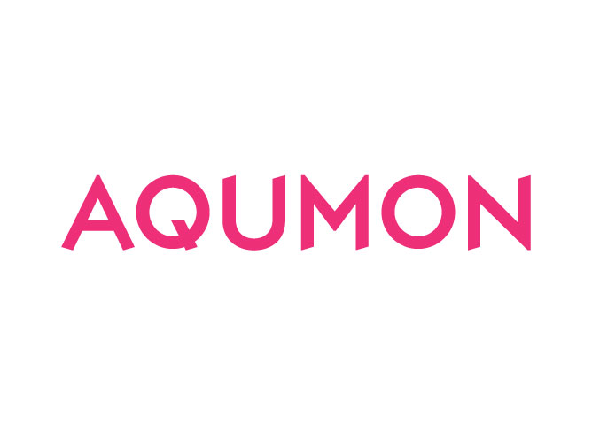 Magnum Research (AQUMON) raised US$30 million as the year's largest funding deal for Asian digital wealth management
