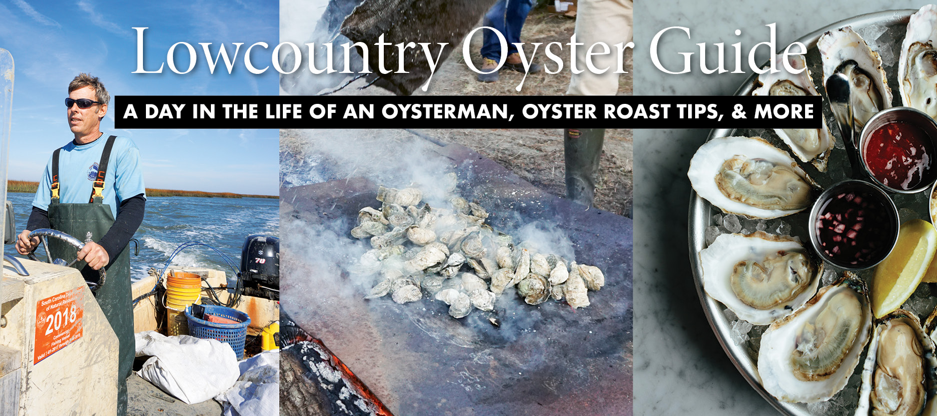 Lowcountry Oyster Guide