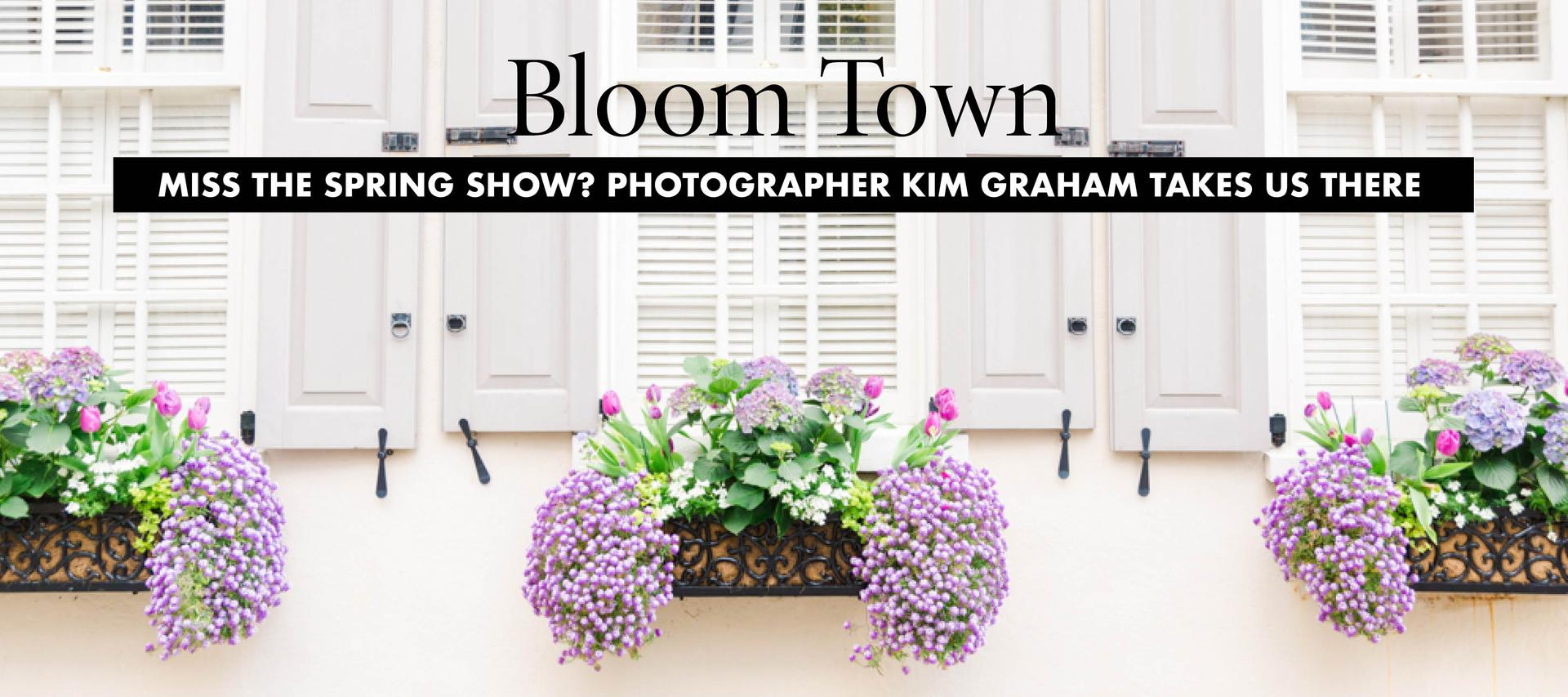 Bloom Town Photo Essay
