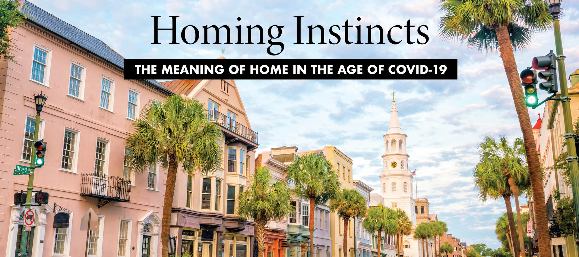 Southern View - The Meaning of Home During the Age of COVID-19