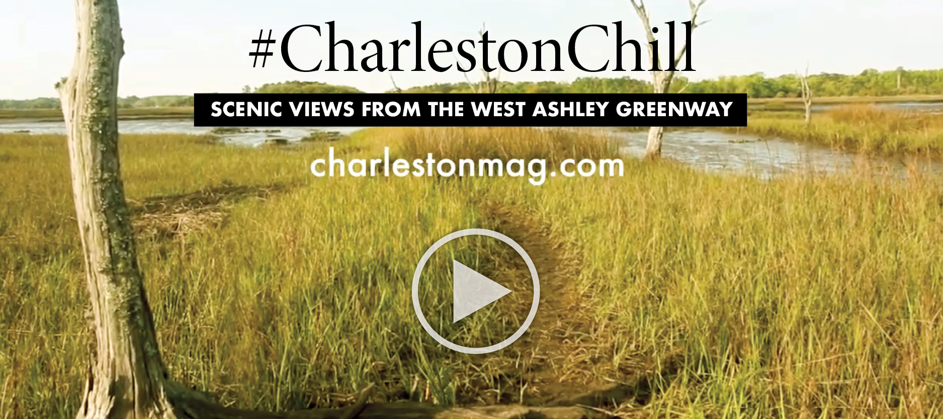 Charleston Chill: on the Greenway