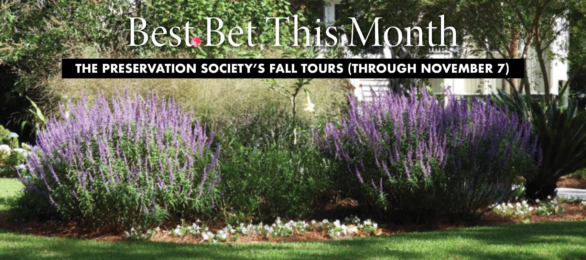 Best Bet!: The Fall Tours of Architecture, History, & Gardens