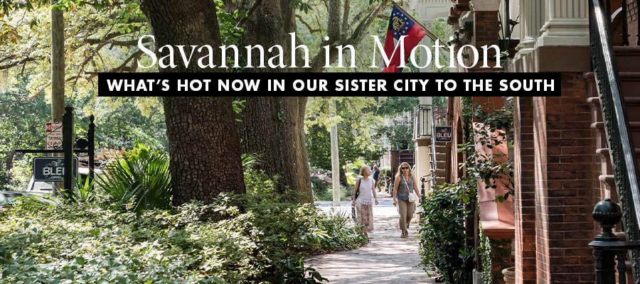 Savannah Feature