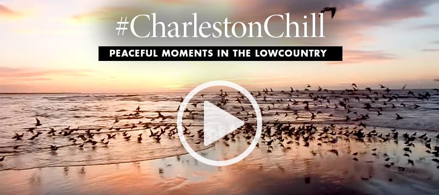 #CharlestonChill