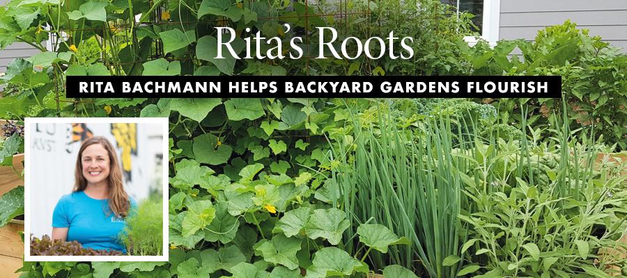 Biz-Sci-Tech: Rita's Roots