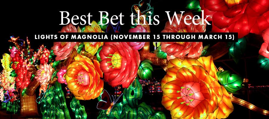 Best Bet: Lights of Magnolia