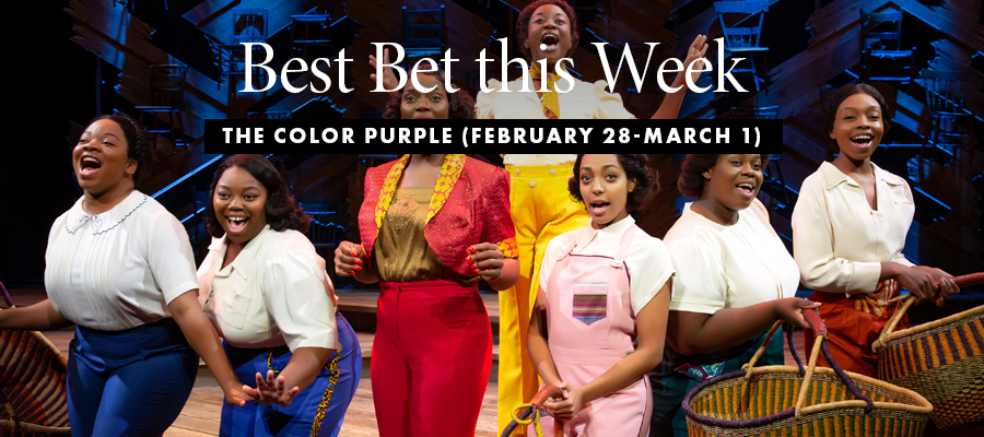 Best Bet: The Color Purple