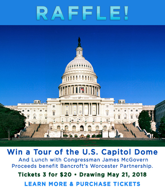 Raffle! Win a Tour of the U.S. Capitol Dome