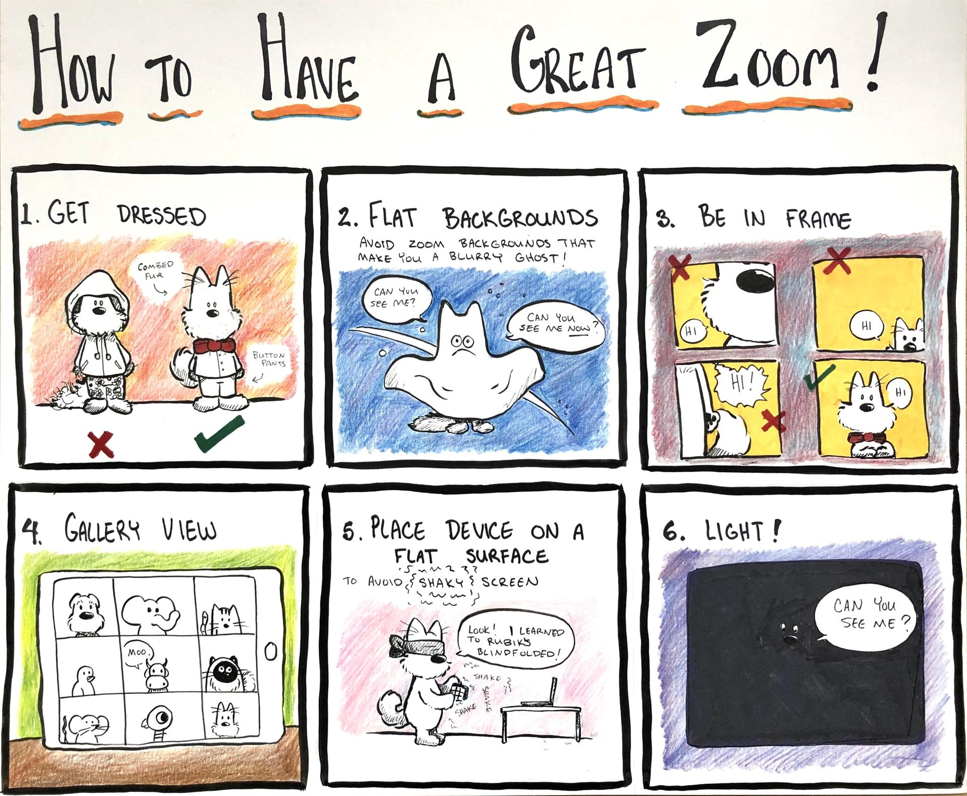 How to have a great zoom!