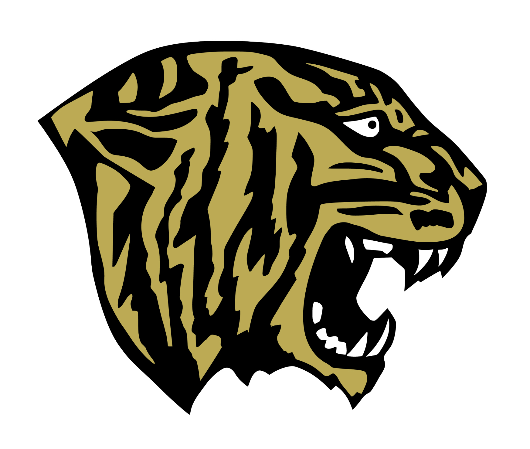 Fridley Tigers