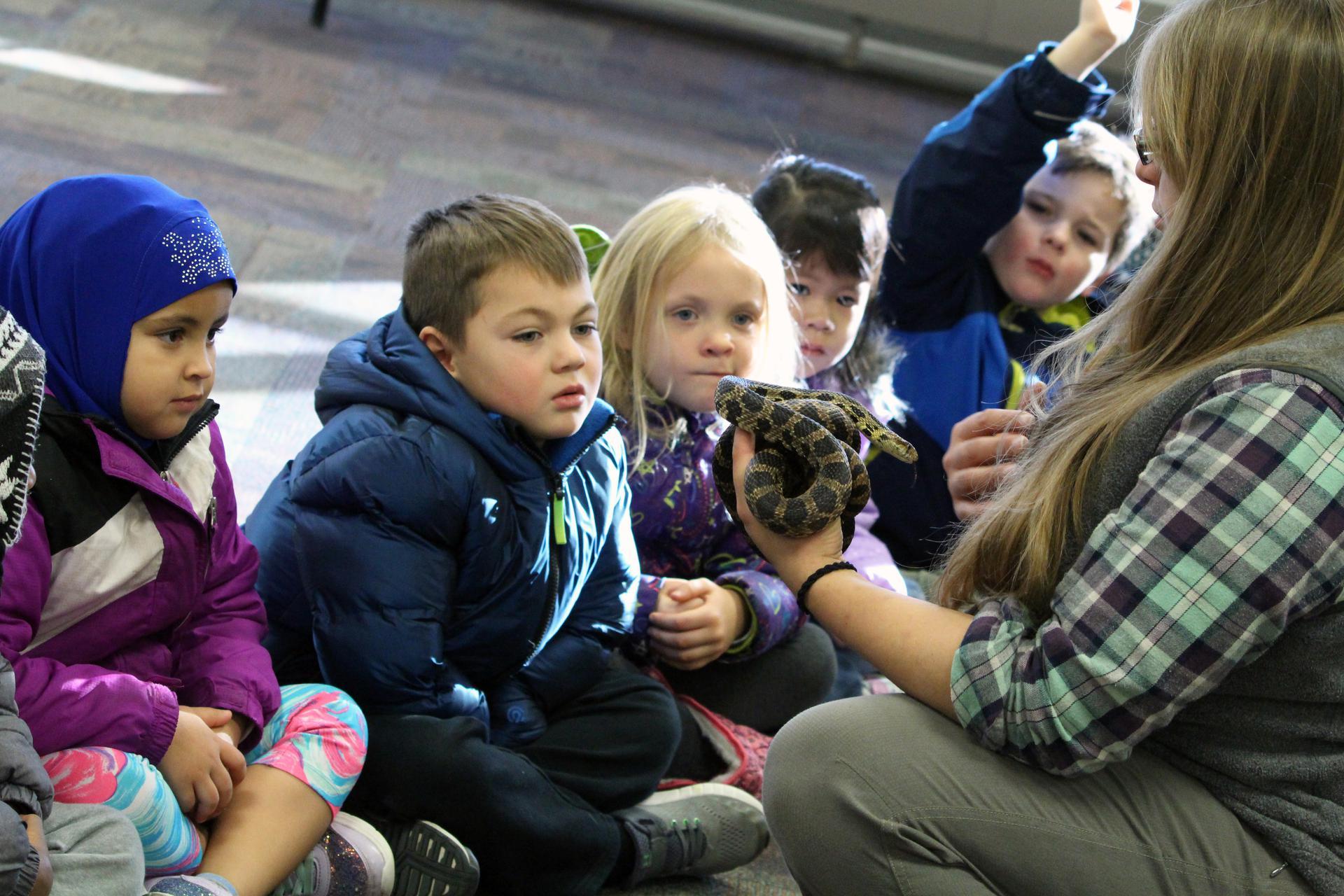 Springbrook Nature Center - Fridley Preschool