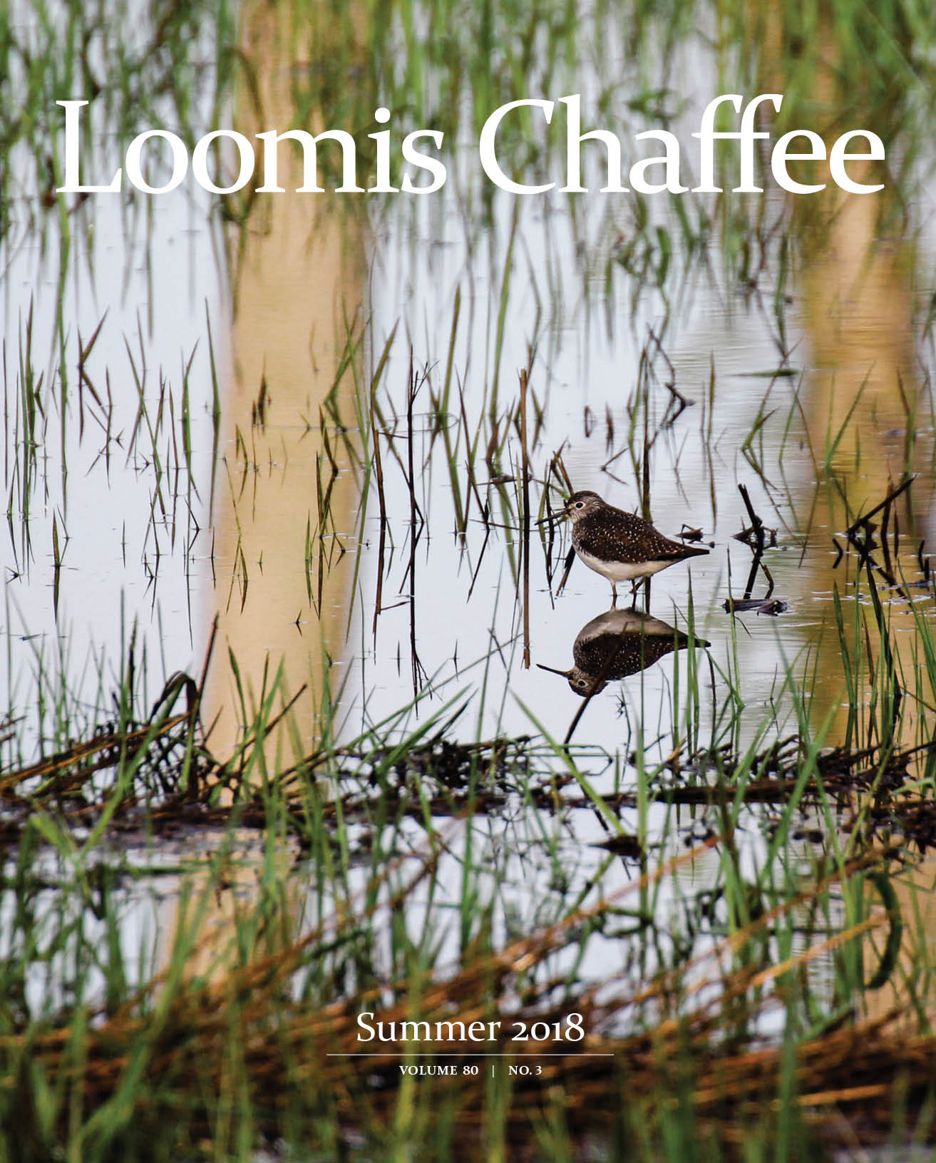 Loomis Chaffee Magazine Summer 2018