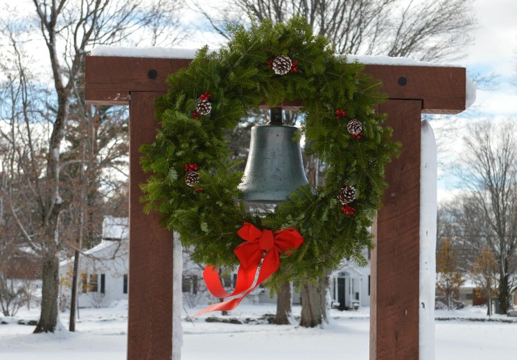 Piper Bell in the Snow