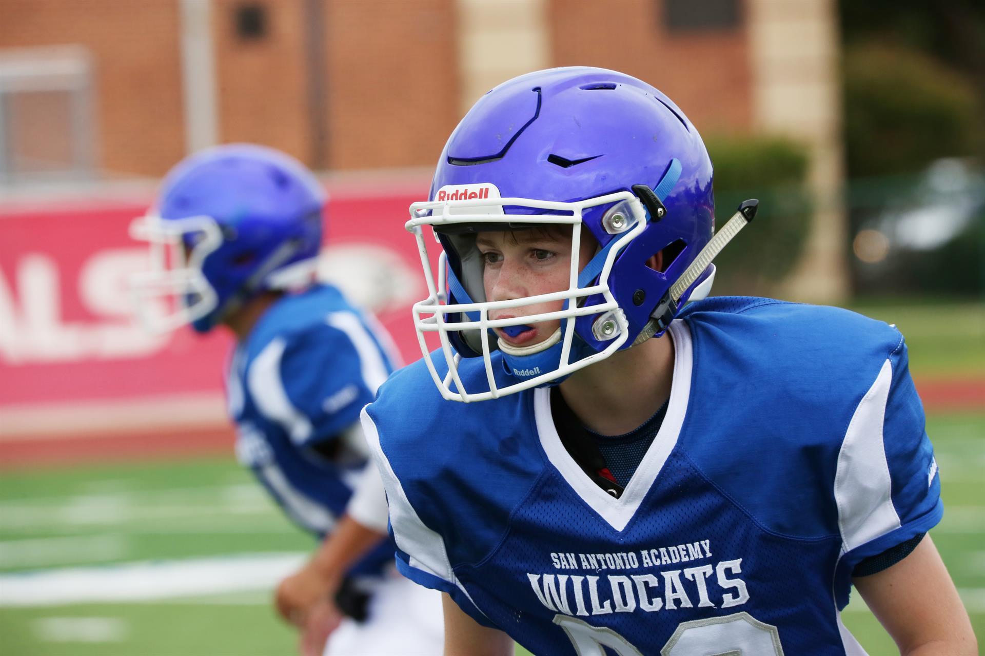 2018 Wildcats football season
