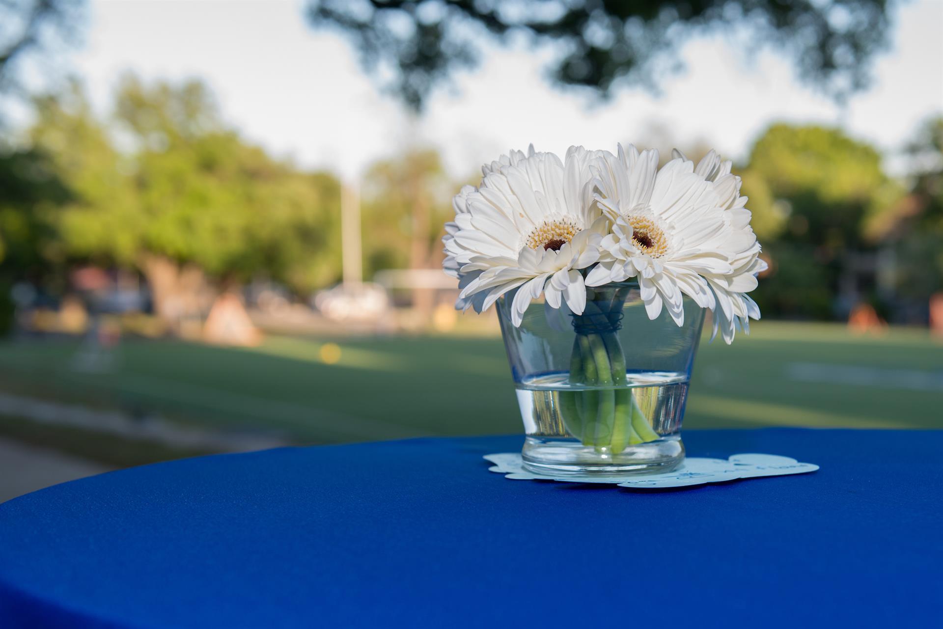 Register Today for the Blue&White Unite Spring Gala