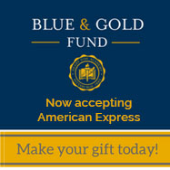 Blue & Gold Fund