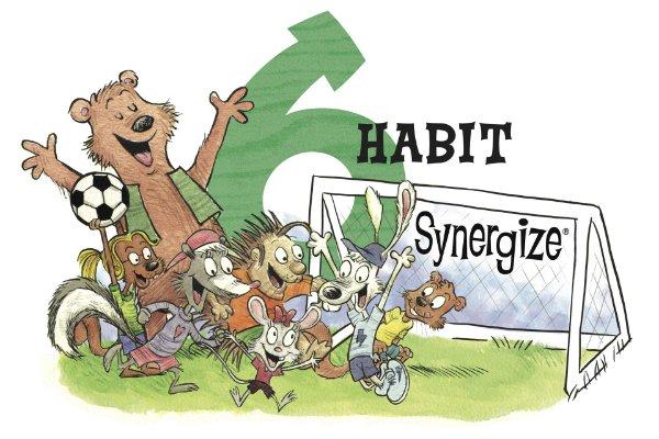 Habit 6, synergize.