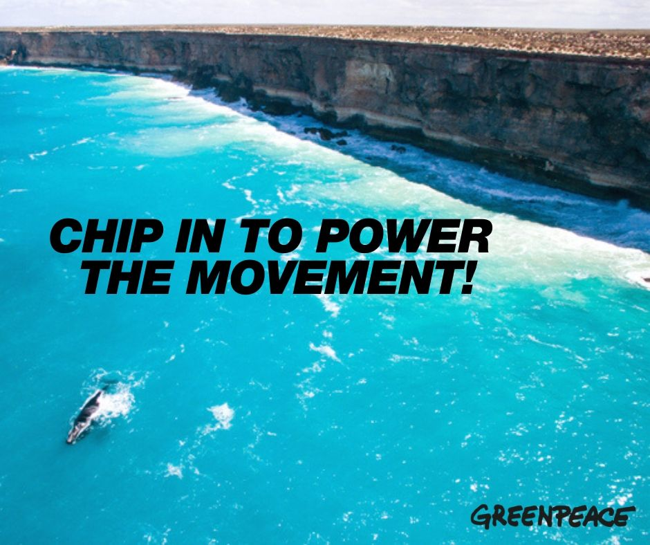 Chip in to power our movement