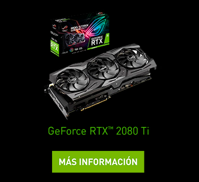 GeForce RTX™️ 2080 Ti
