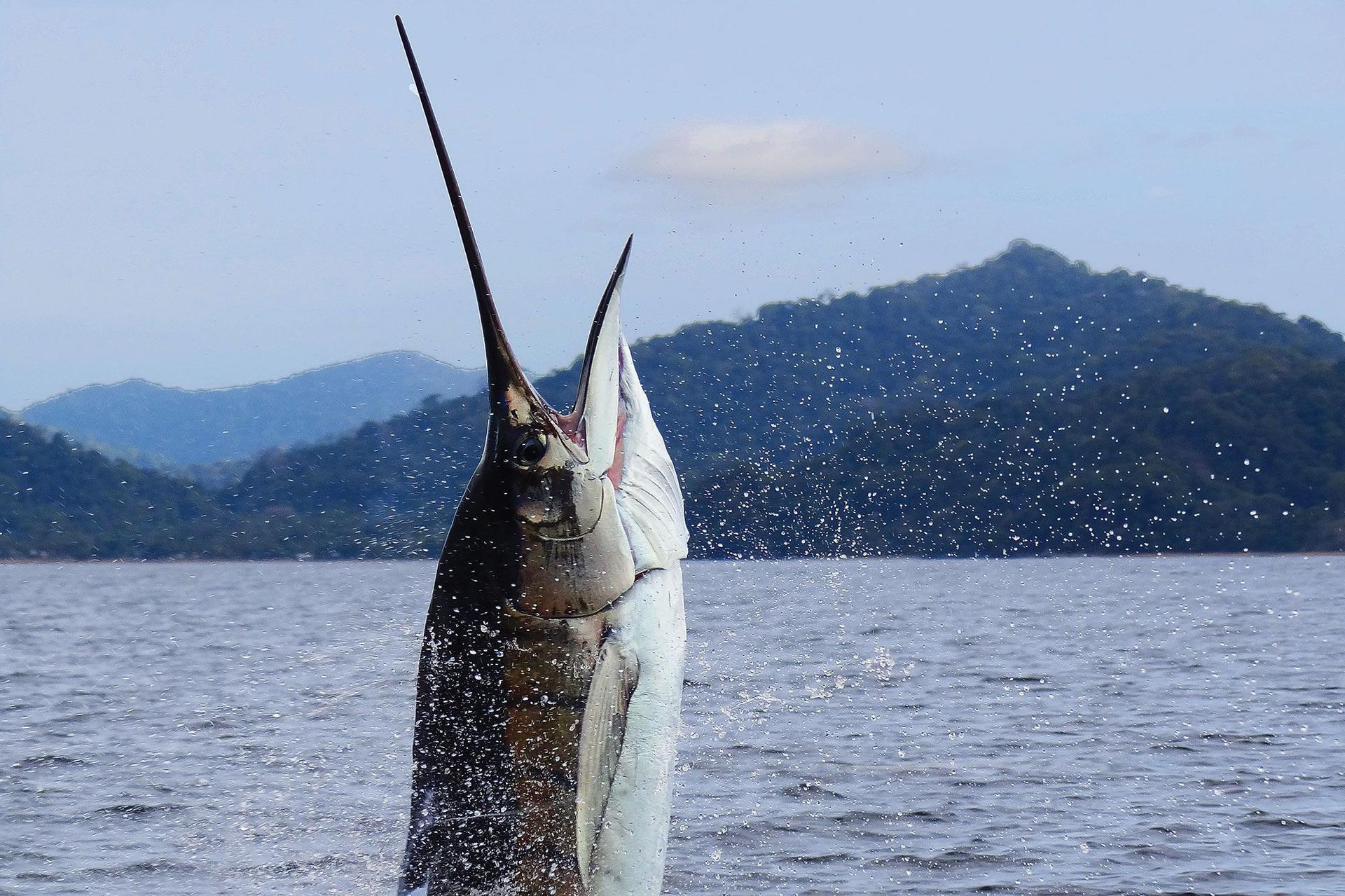 Colombia Fishing