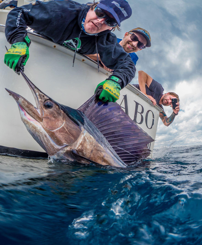Red Sea Fishing