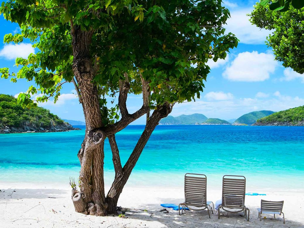 Three lounge chairs under a tropical tree's shade on an island beach.