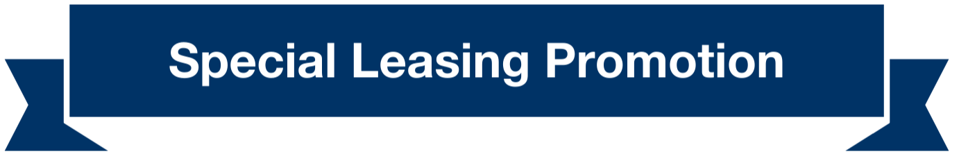 leasing_promotion