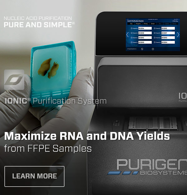 Ionic® Purification System for FFPE Samples
