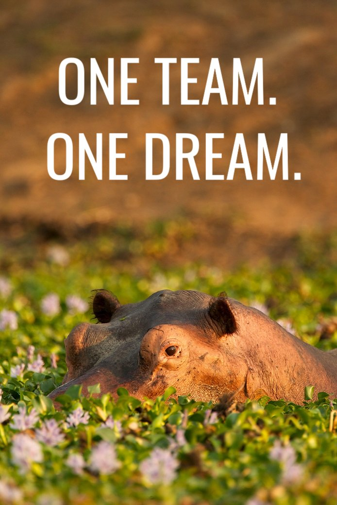 One Team. One Dream. Vote for us to WIN!