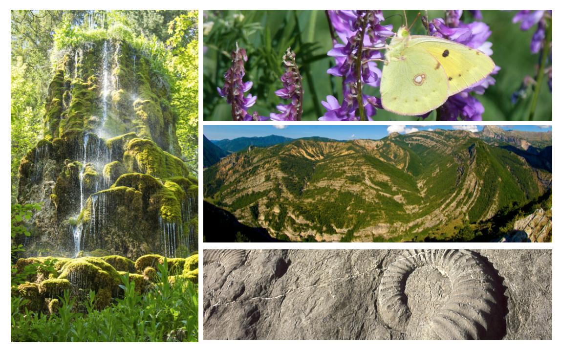 """Un """"musée promenade"""" :  l'Unesco géoparc de Haute-Provence Capture%20d%E2%80%99e%CC%81cran%202021-07-21%20a%CC%80%2016.51.54"""