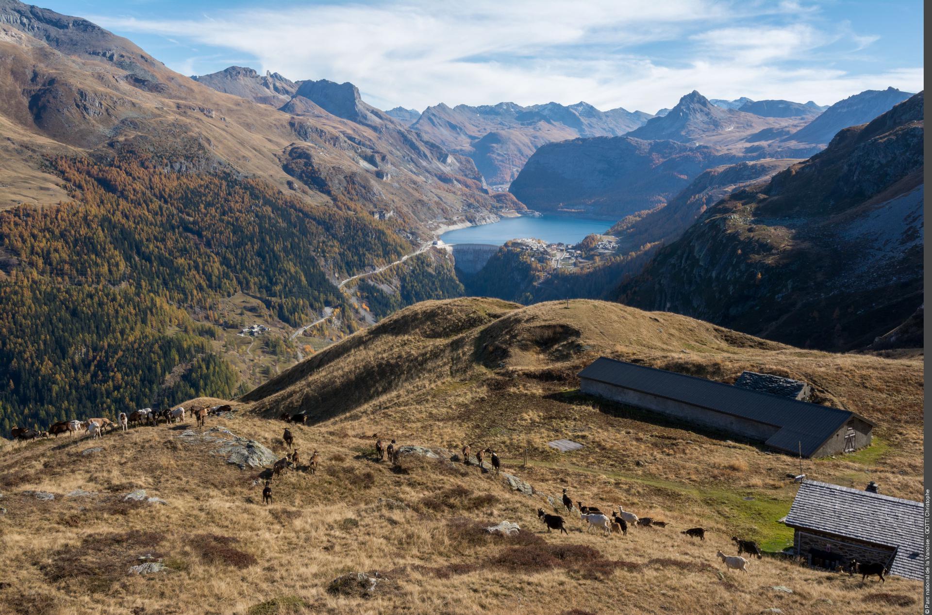 Xplore Alpes Festival : l'été indien en Tarentaise ! 3pnv019092-PN-Vanoise-GOTTI_Christophe-2000px