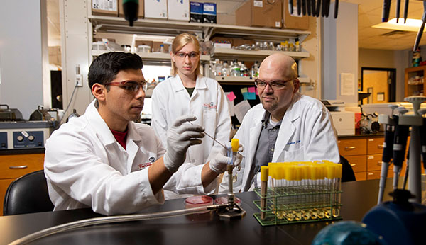 Graduate students (from left) Martin Douglass and Alexandria Purcell work in the laboratory with professor Stephen Trent in 2019. (Photo by Andrew Davis Tucker/UGA)